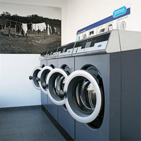primus laundry